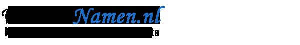 WebsiteNamen.nl Website Namen Te Koop